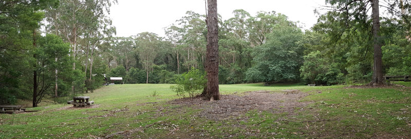 The picnic area at Bangalee Reserve is open and green with fantastic facilities including an undercover picnic area and picnic tables dotted around